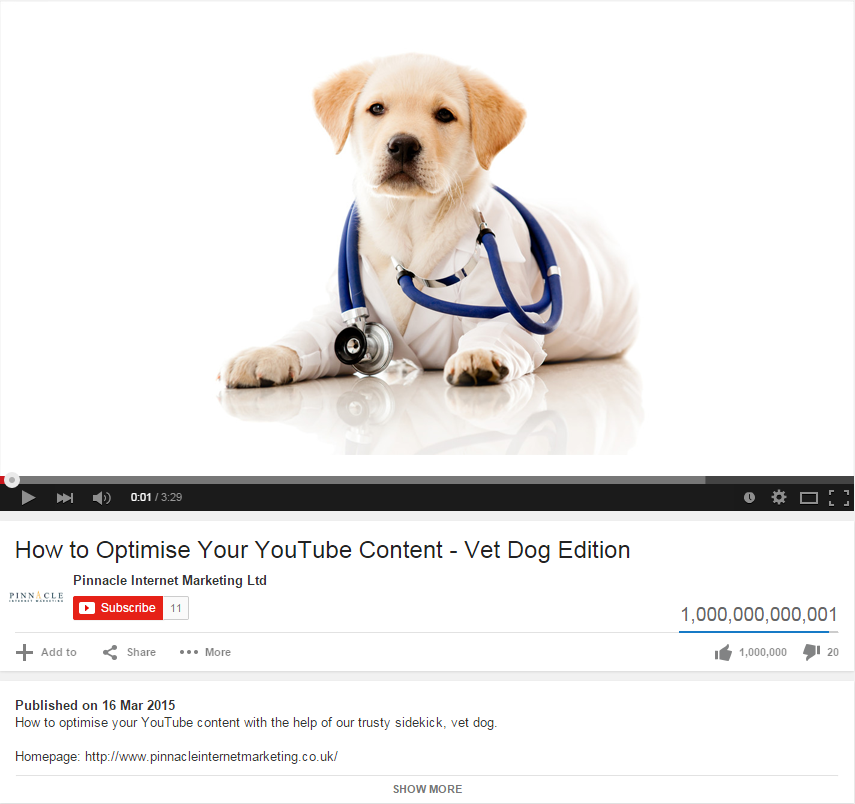 Vet Dog YouTube3