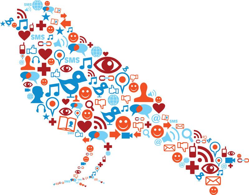 Twitter Bird SMO